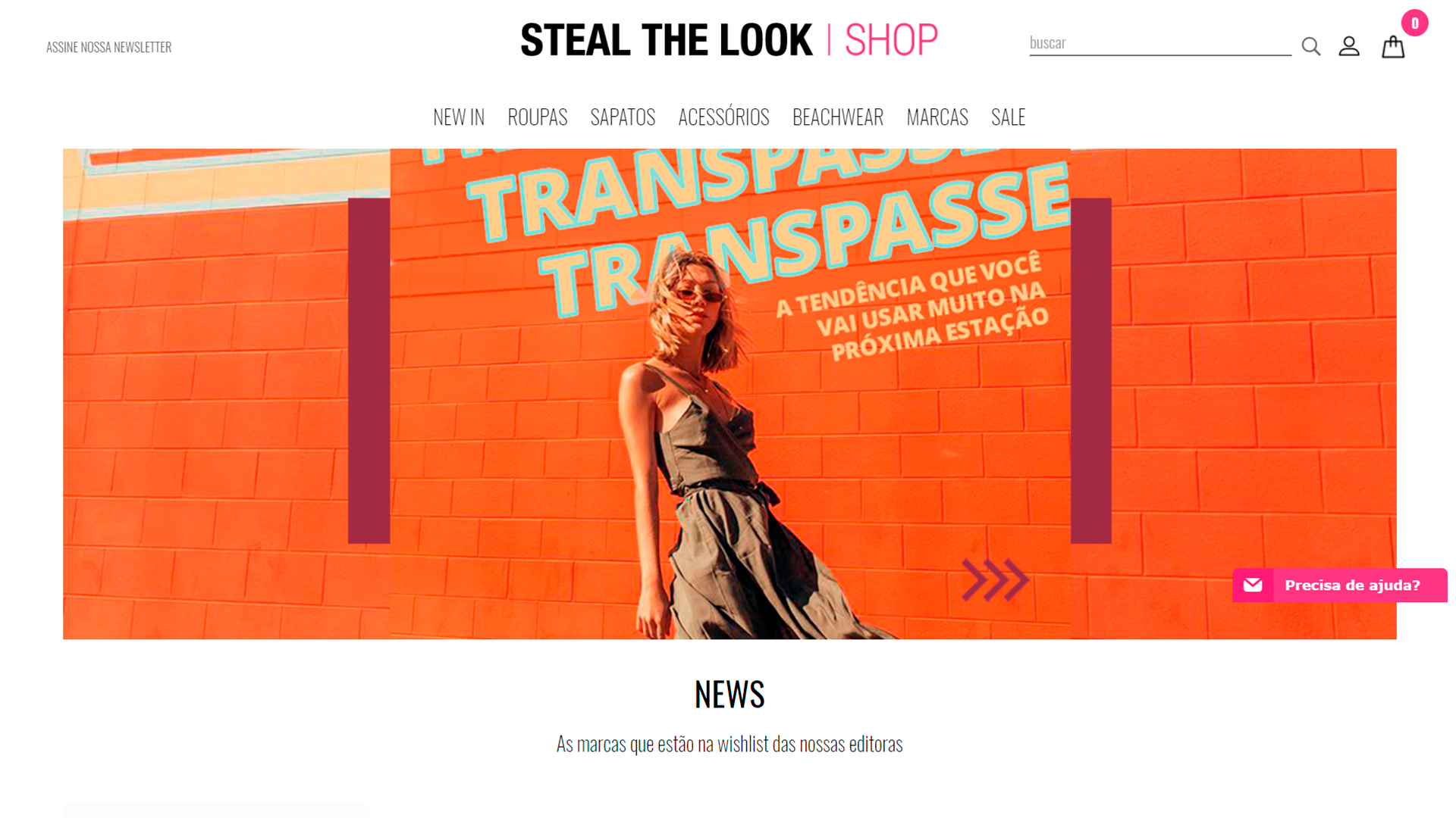 Steal the look - Shopify Experts