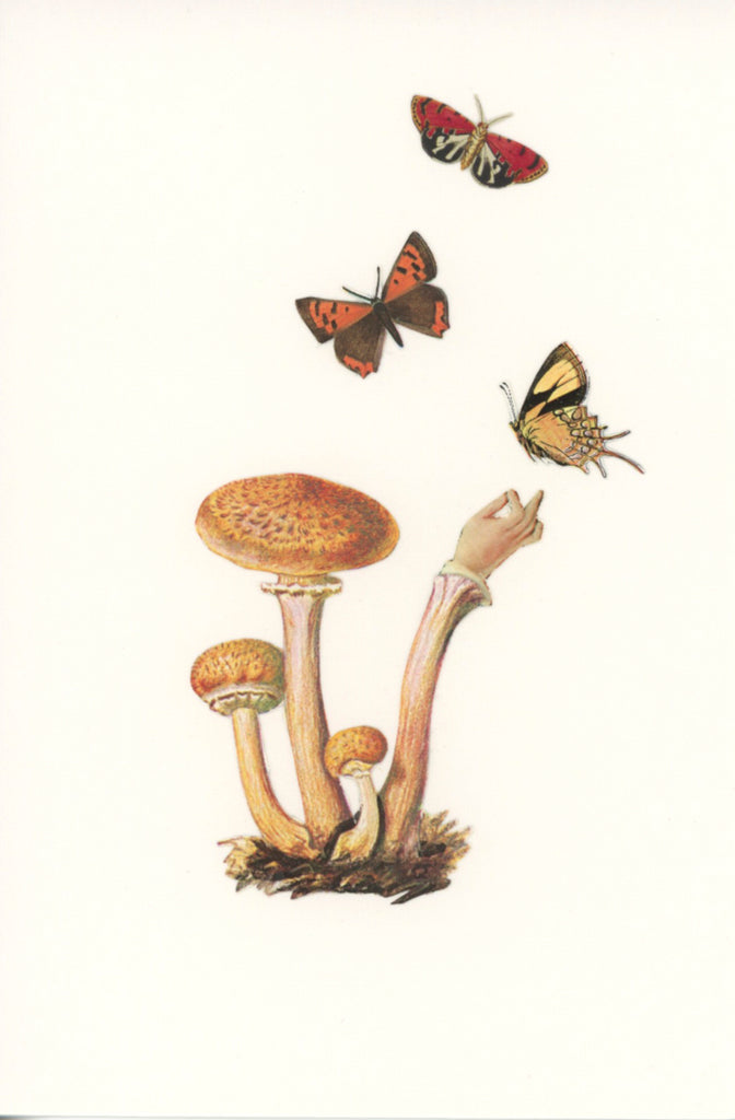 Handshrooms with Butterflies #1