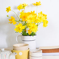 Spring Cleaning Tips To Keep Your Home Fresh
