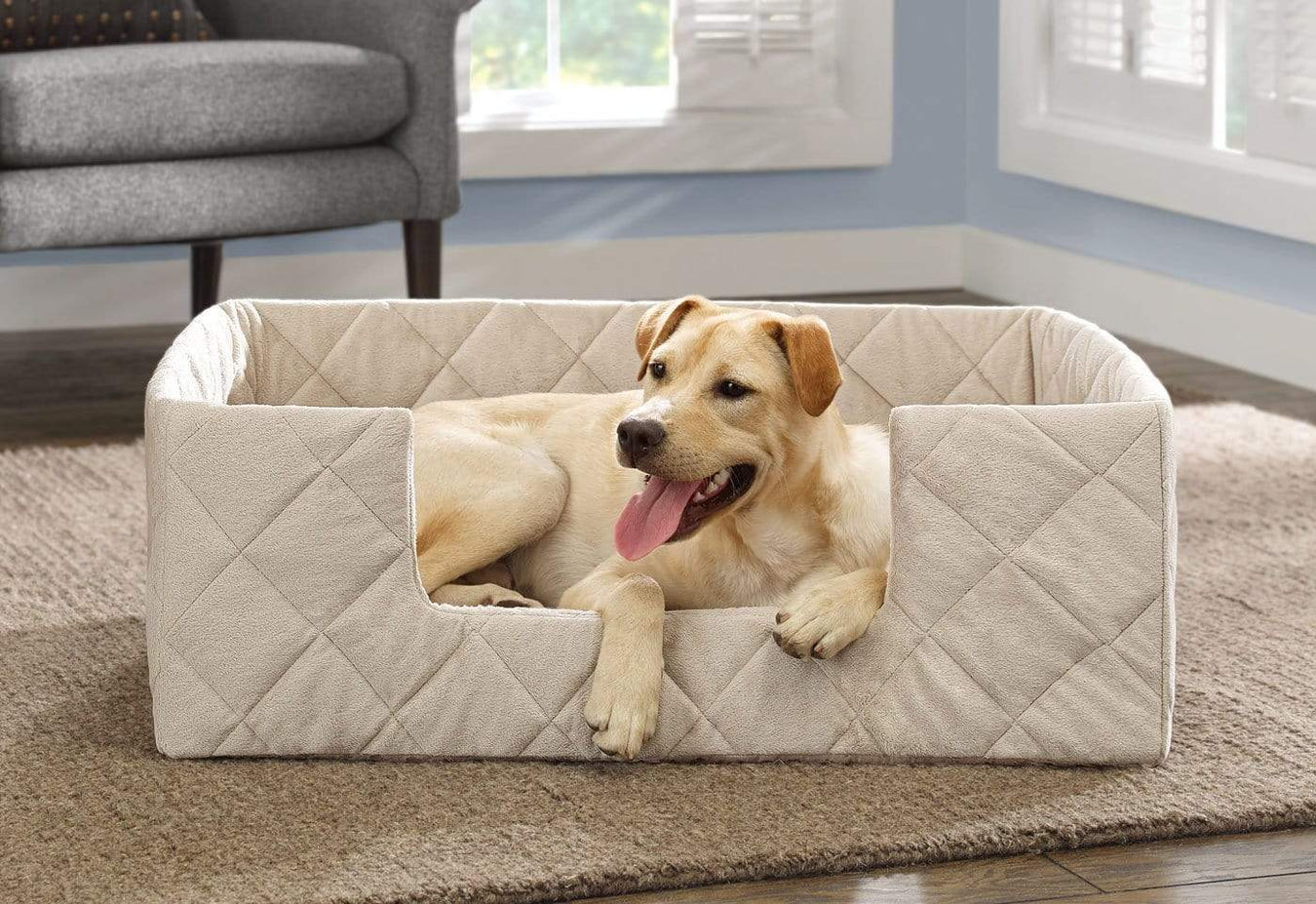 Portable Pet Bed