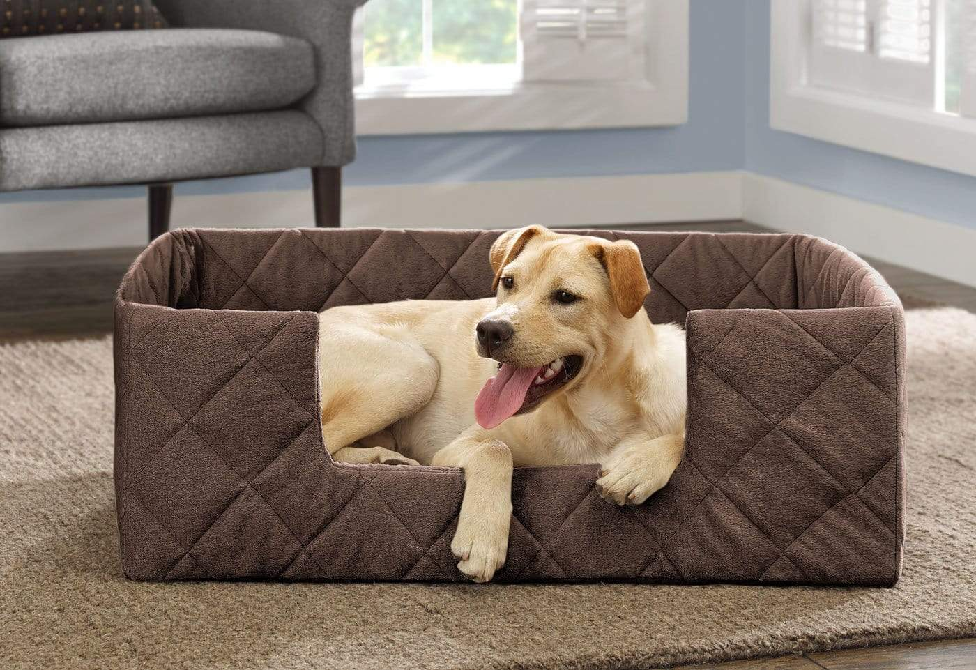 Portable Pet Bed - Large / Chocolate