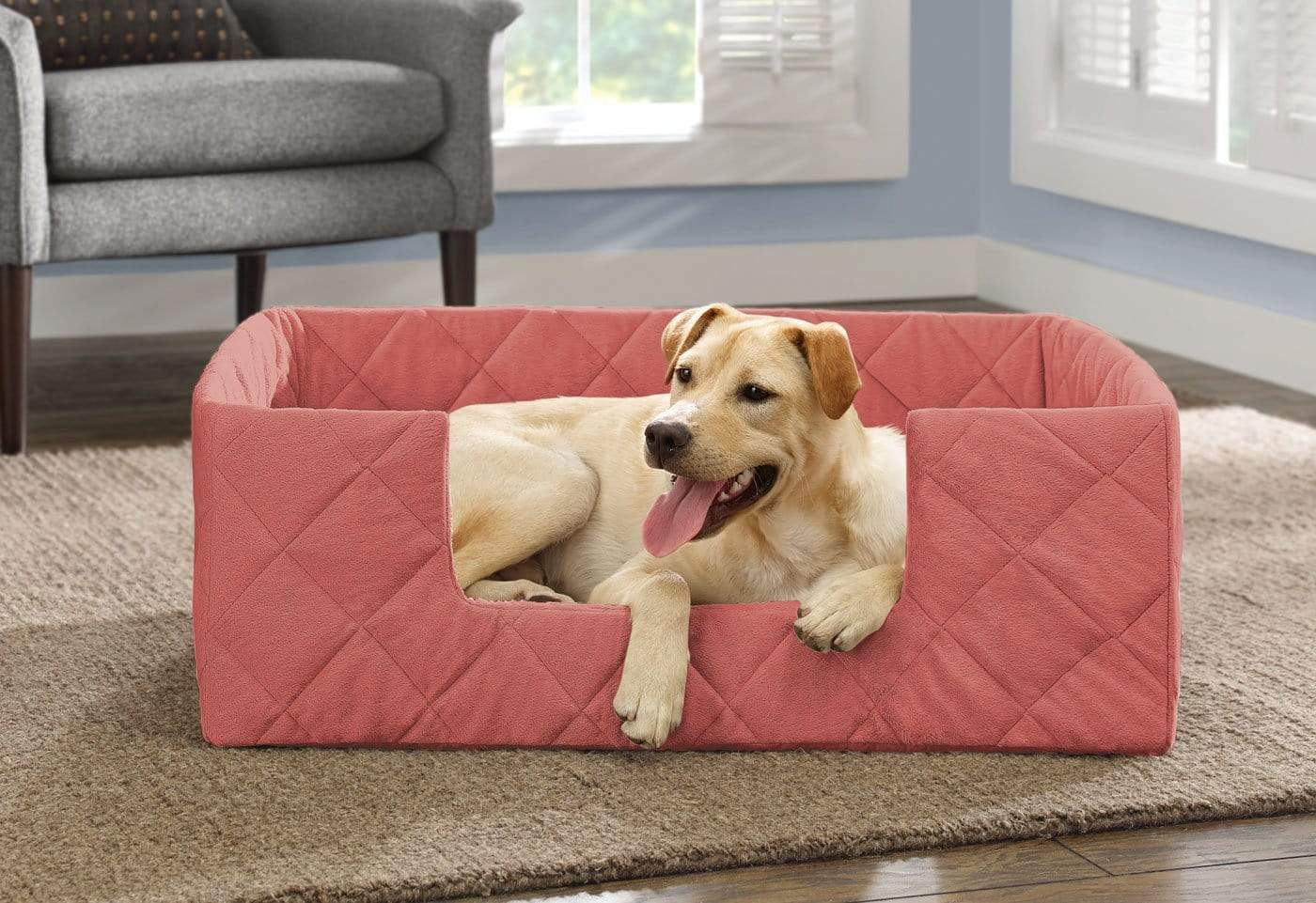 Portable Pet Bed - Large / Coral