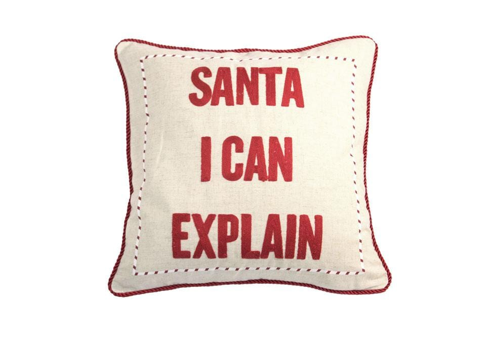 I Can Explain Red 20 Inch Square Decorative Pillow