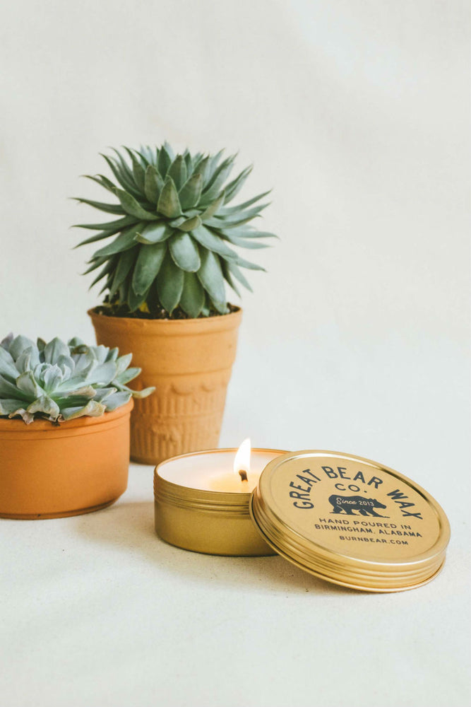 Great Bear Wax Co - Succulent 4oz Traveler Candle