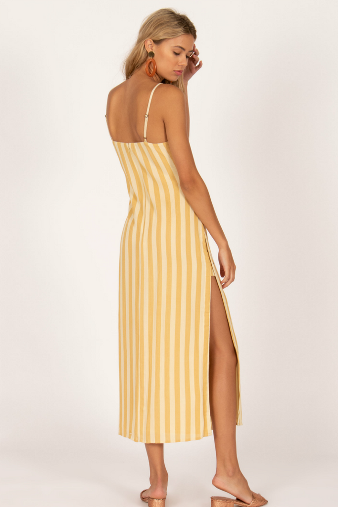 Amuse Society - Hidden Cove Woven Maxi Dress - Ginger - Back