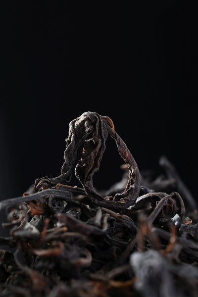 "2008 Hei Shan ""Old Tree Raw"" Liu Bao Tea"