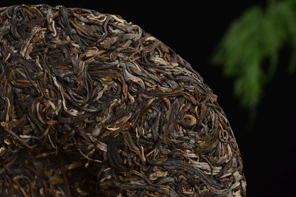 "2019 Yunnan Sourcing ""Autumn Suan Zao Shu"" Old Arbor Raw Pu-erh Tea Cake"