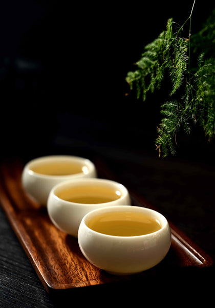 "2020 Yunnan Sourcing ""Autumn Jingmai Mountain"" Raw Pu-erh Tea Cake"