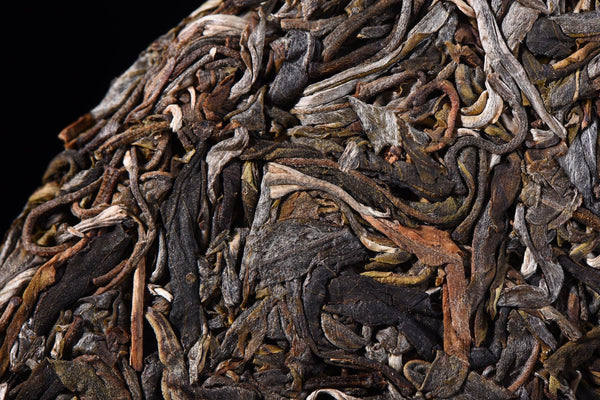 "2018 Yunnan Sourcing ""Autumn Ai Lao Secret Garden"" Old Arbor Raw Pu-erh Tea Cake"
