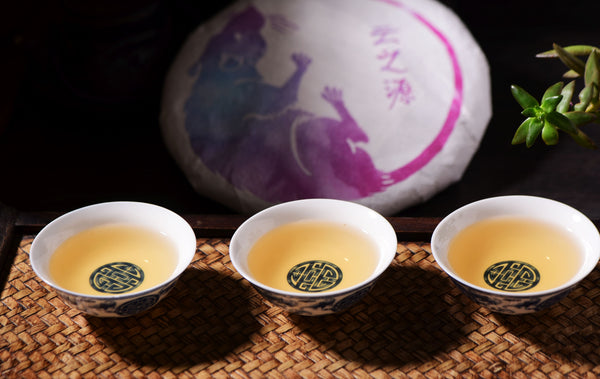 "2020 Yunnan Sourcing ""Jinggu Ye Sheng Cha"" Wild Tree Purple Tea Cake"