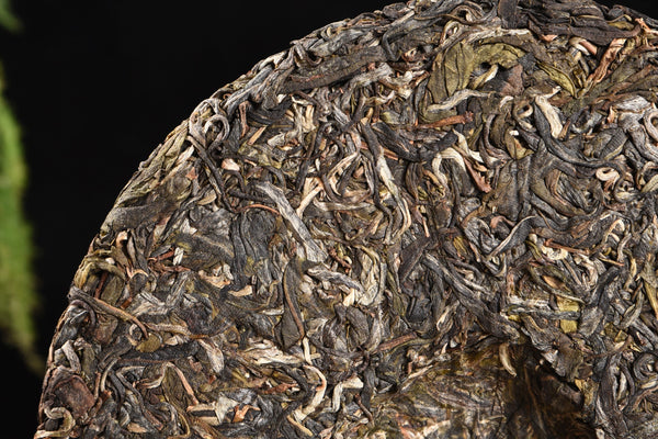 "2020 Yunnan Sourcing ""Long Tang Gu Shu"" Old Arbor Raw Pu-erh Tea Cake"