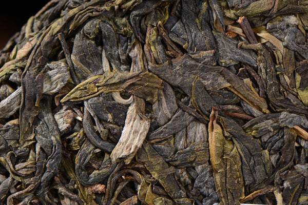 "2019 Yunnan Sourcing ""Bang Dong Impression"" Old Arbor Raw Pu-erh Tea Cake"