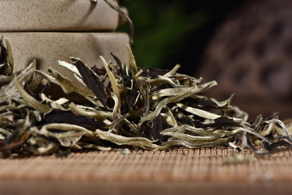 "Certified Organic ""Yunnan Moonlight White"" White Tea"