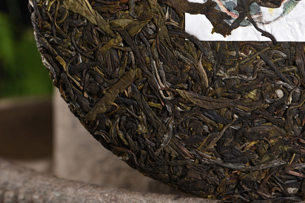 "2020 Yunnan Sourcing ""Wu Liang Mountain"" Wild Arbor Raw Pu-erh Tea Cake"