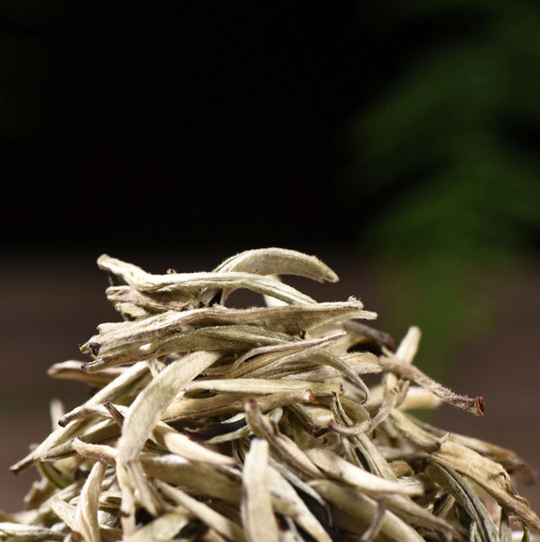 Jing Gu White Pekoe Silver Needles White Tea