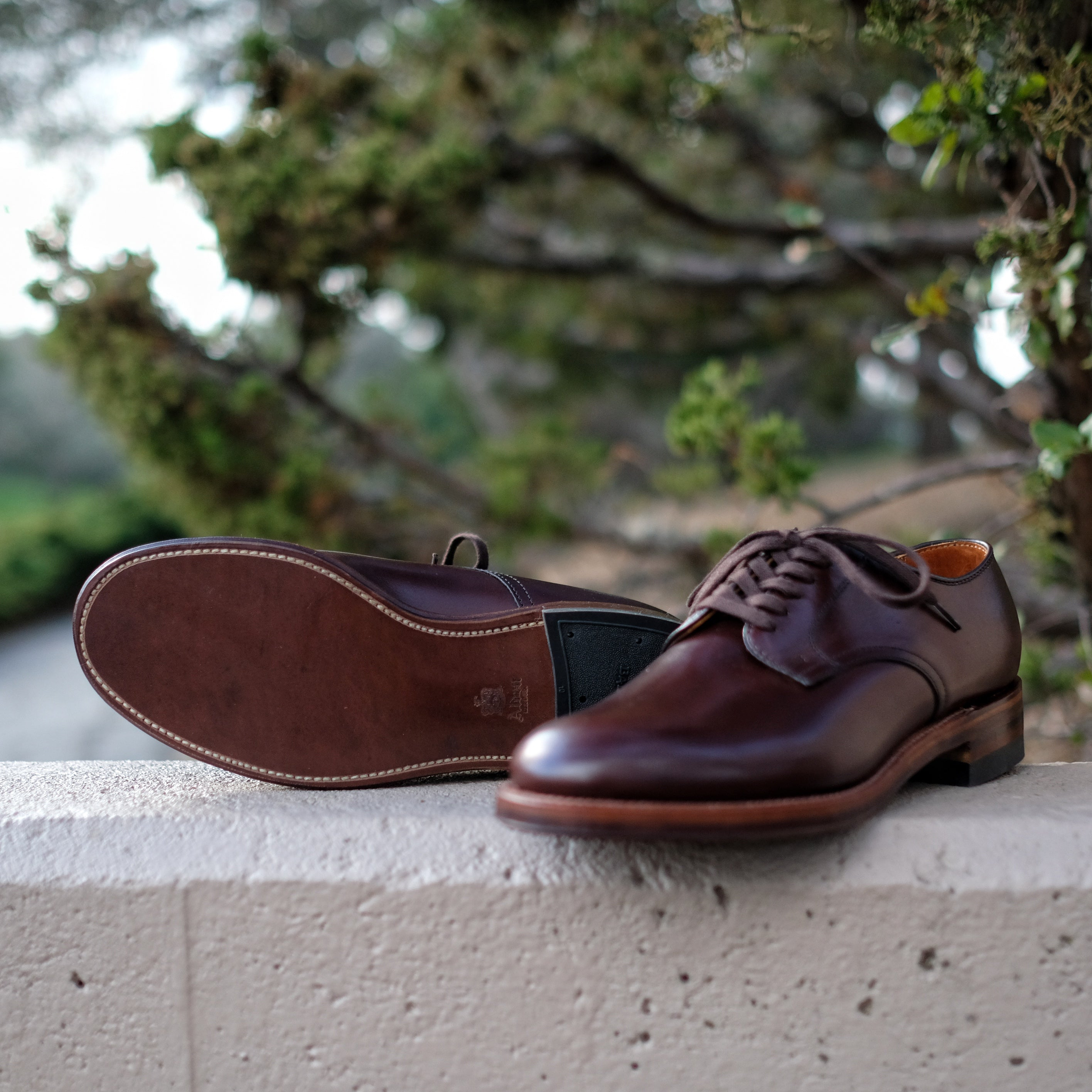 Alden x Brogue Officer Shoe