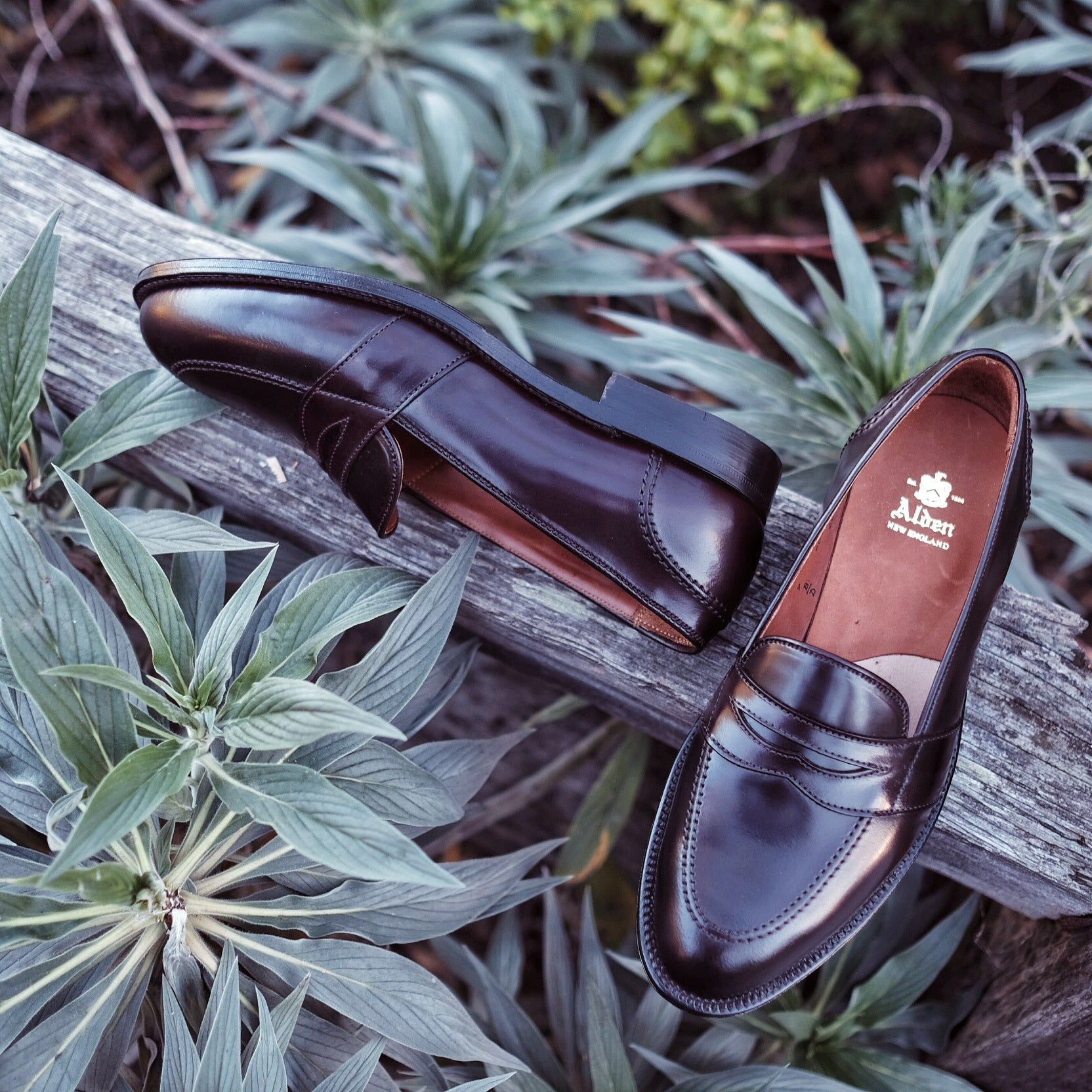 Alden Full Strap Loafer #684