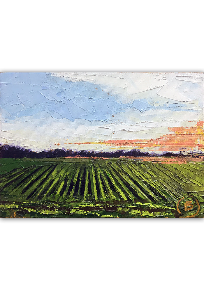 "Delta Farmlands 7""x5"""