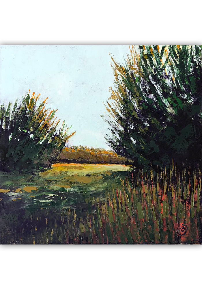 "Early Light 20""x20"""
