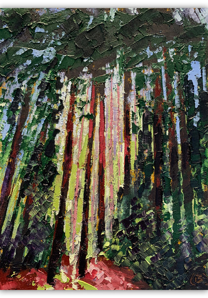 "Redwoods Sunshine, 9""x12"""