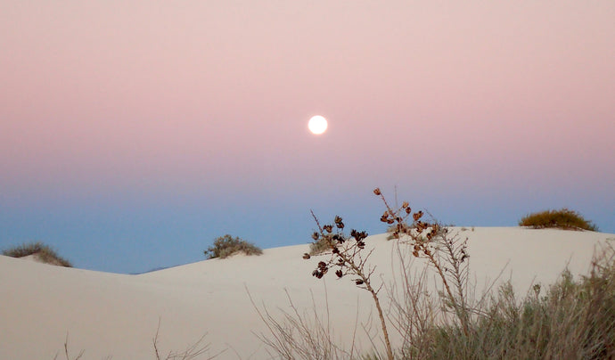 A Year Round Winter Landscape: White Sands National Monument