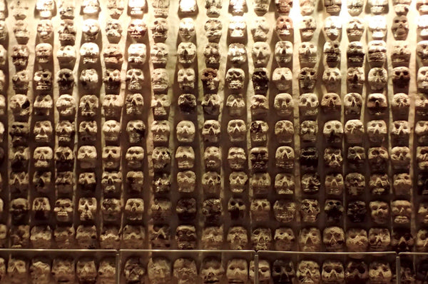 The Great Pyramid of Tenochtitlan Museum, Wall of Skulls, Templo Mayor, Mexico City