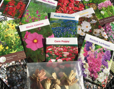 Wildflower seeds, solstice garden, wildflower gardens, flower seeds