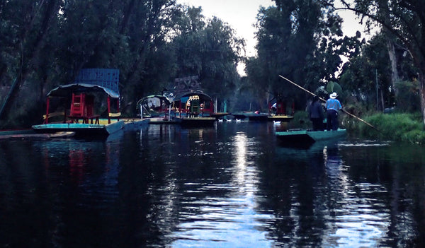 Xochimilco at dusk, Mexico City
