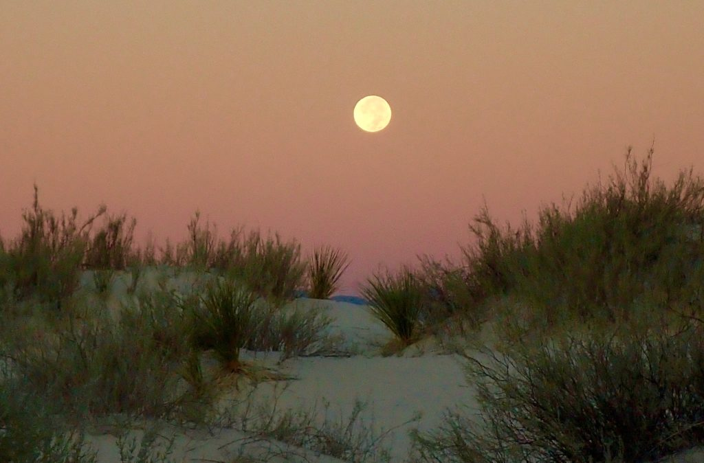 Moon set over the desert.