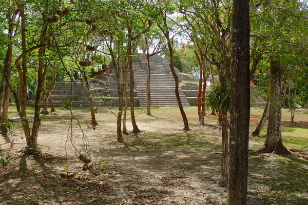 The first structure encounter, Cahal Pech, Belize