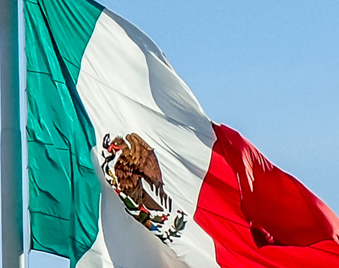 Mexican Flag, La Bandera de Mexico, Mexican Eagle on Cactus, Symbol of Mexico, Mexica Symbol, Mexico City