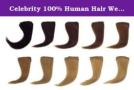 Human Hair Testing Kit 10 Color Levels