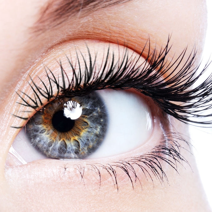 Lash tinting services