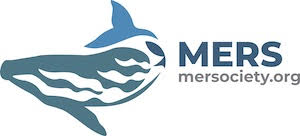 MER logo of a whale swimming