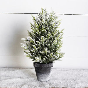 Frosted Evergreen Tree
