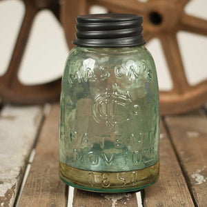 Mason Jar Fly Catcher