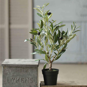 If you're dreaming of a Tuscan farmhouse, then this Potted Olive Bush will make the perfect addition to your home. Bring classic Mediterranean style to your home with this faux olive tree plant. Meticulously crafted to look like the real thing, this bush packed with lush grey green leaves and dotted with dark olives.