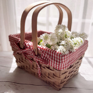 "My grandmother used to have a basket like this where she kept all the makings for s'mores and other sweet treats. It makes the perfect little picnic caddy, especially to hold napkins or utensils while entertaining. This cheerful Red and White Gingham Lined Basket is a sweet for any room in your farmhouse. Features red and white gingham fabric that can be easily removed. 10.5""L x 7.5'W x 5.5""H (10""H with handles)"