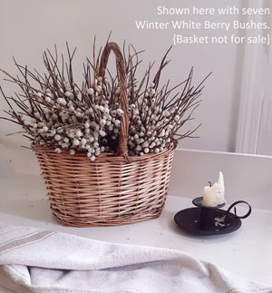 "Add a rustic touch to any bowl, basket or pot with our Winter White Berry Bush. The soft cream berries lend an earthy charm to any room in your farmhouse. This faux berry bush can easily tuck in to any bowl or basket to create a farm table centerpiece that will look beautiful in any season. 13"" H"
