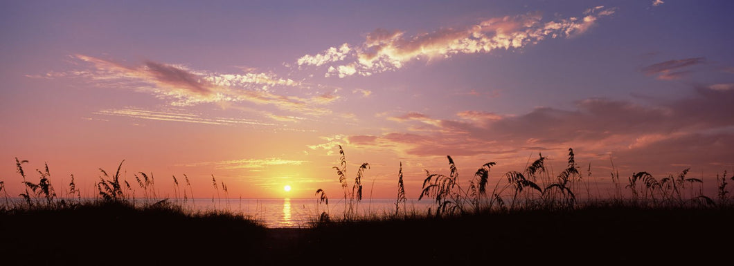Sunset over the sea, Venice Beach, Sarasota, Florida, USA