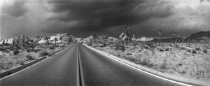 Empty road passing through Joshua Tree National Park, San Bernardino County, California, USA
