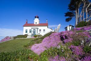 Lighthouse on a hill, Battery Point Lighthouse, Crescent City, California, USA