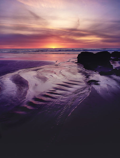 Scenic view of the beach at sunset, Searose Beach, Oregon Coast, Oregon, USA