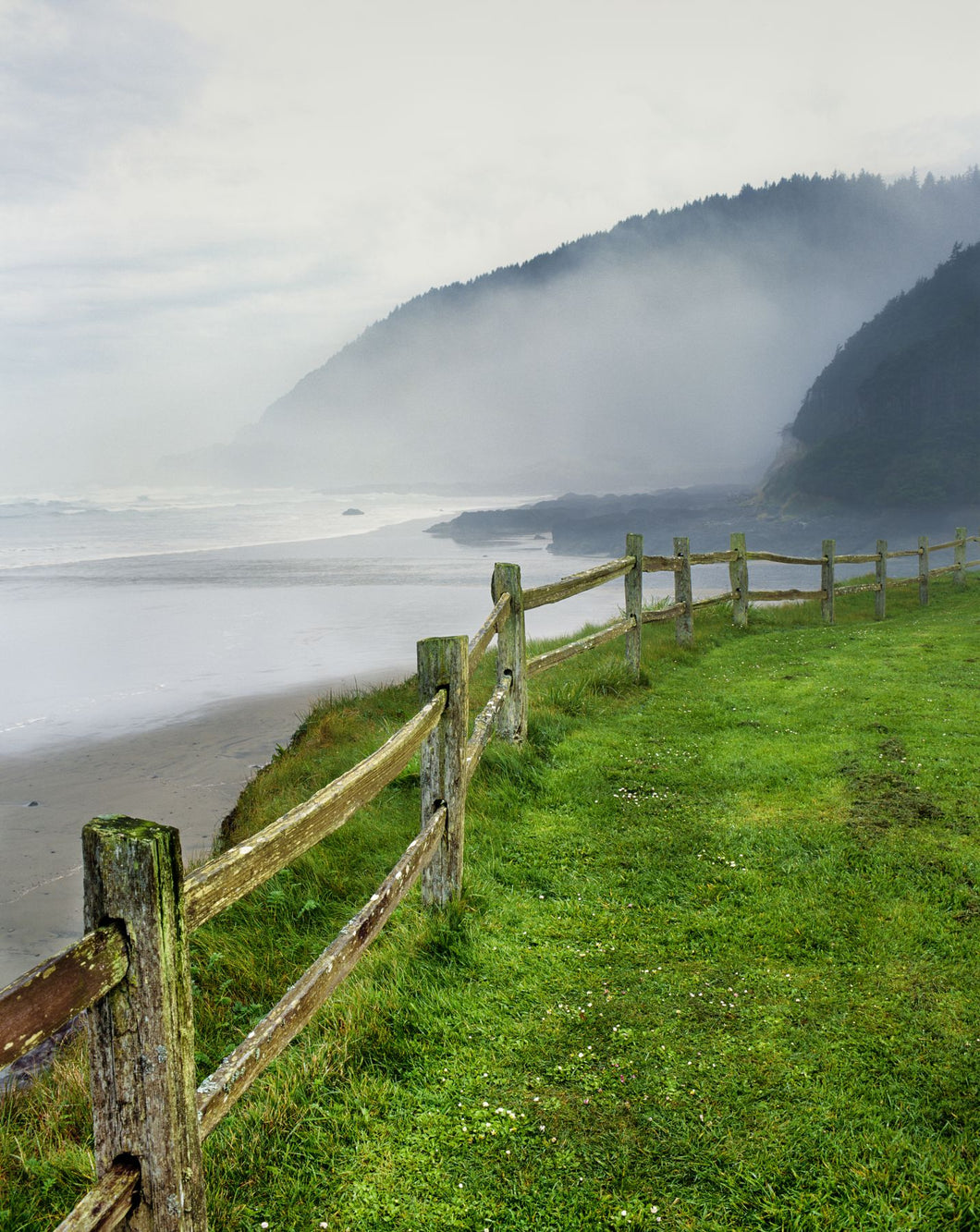 Fence at Captain Cook Point, Neptune State Scenic Viewpoint, Cape Perpetua, Lincoln County, Oregon, USA