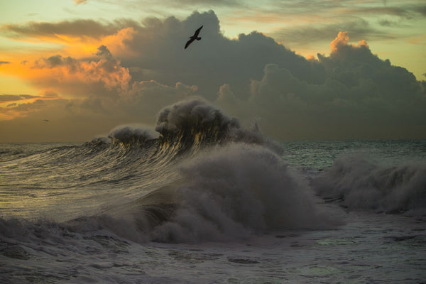 Waves in the Pacific Ocean at dusk, San Pedro, Los Angeles, California, USA
