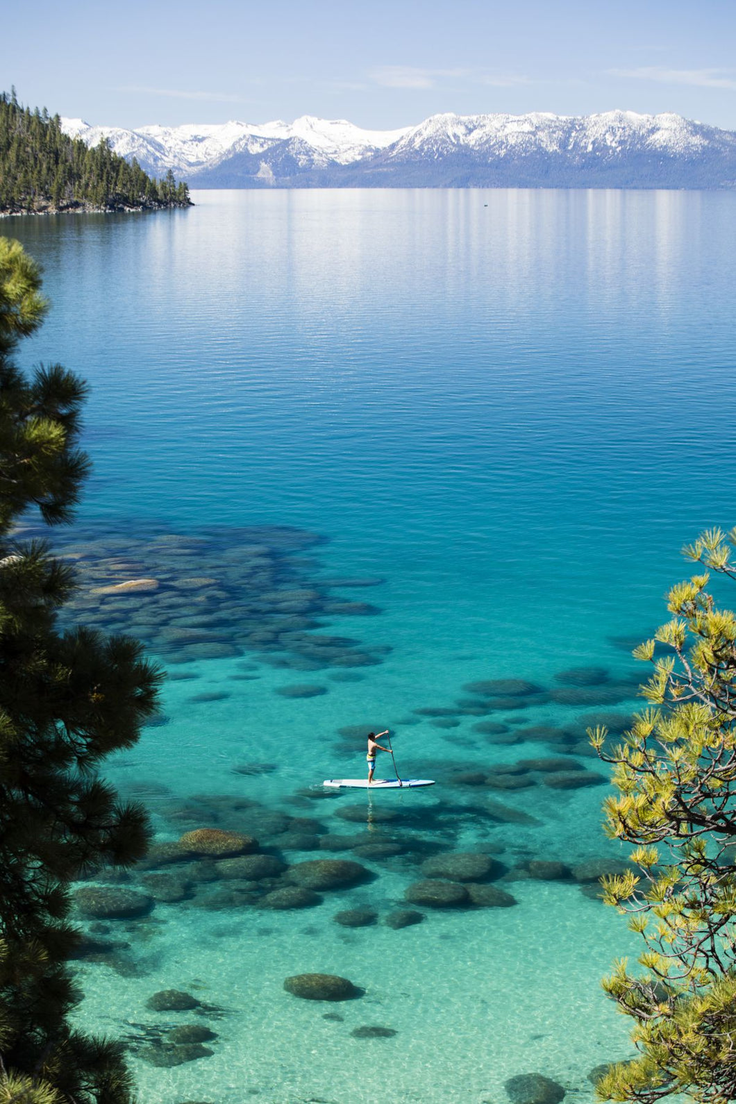 Man paddle boarding in a lake, Lake Tahoe, California, USA