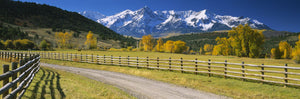 Fence along a road, Sneffels Range, Colorado, USA