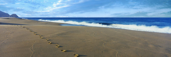 Footprints on the beach, Playa La Cachora, Todos Santos, Baja California Sur, Mexico