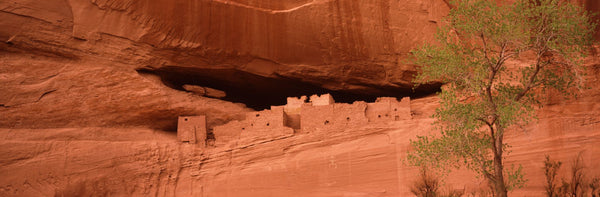 Ruins of house, White House Ruins, Canyon De Chelly, Arizona, USA
