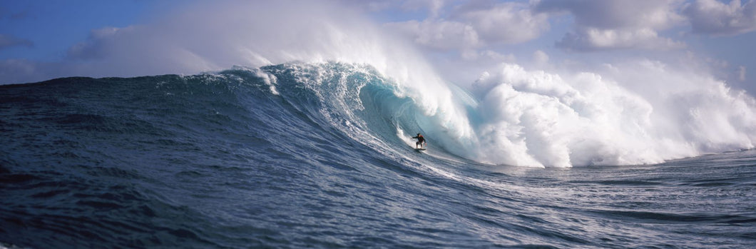 Surfer in the sea, Maui, Hawaii, USA